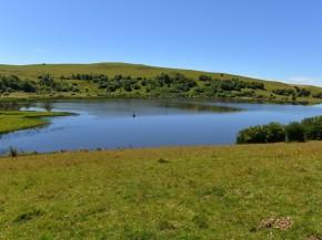 Belle vue du lac sous le soleil en été