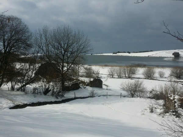 l'hiver tardif